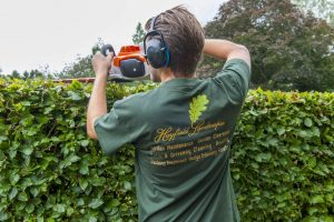 Garden Services Orpington by Hayfield Landscapes (7)