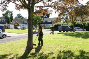 Grounds Maintenance Orpington (5)