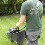 Hayfield Landscapes Gardeners in Orpington (1)