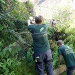 Hayfield Landscapes Gardeners in Orpington (14)