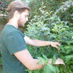 Hayfield Landscapes Gardeners in Orpington (15)