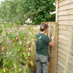 Hayfield Landscapes Gardeners in Orpington (2)