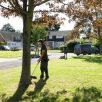 Hayfield Landscapes Gardeners in Orpington (21)