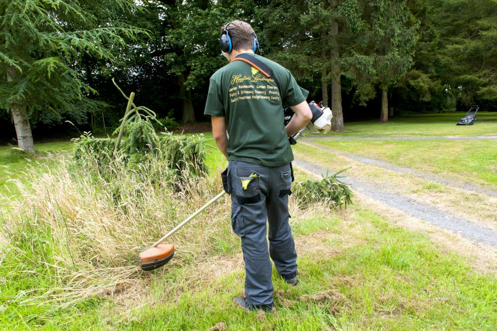 Hayfield Landscapes Gardeners in Orpington (30)