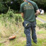 Hayfield Landscapes Gardeners in Orpington (31)