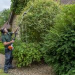 Hayfield Landscapes Gardeners in Orpington (37)