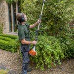 Hayfield Landscapes Gardeners in Orpington (40)