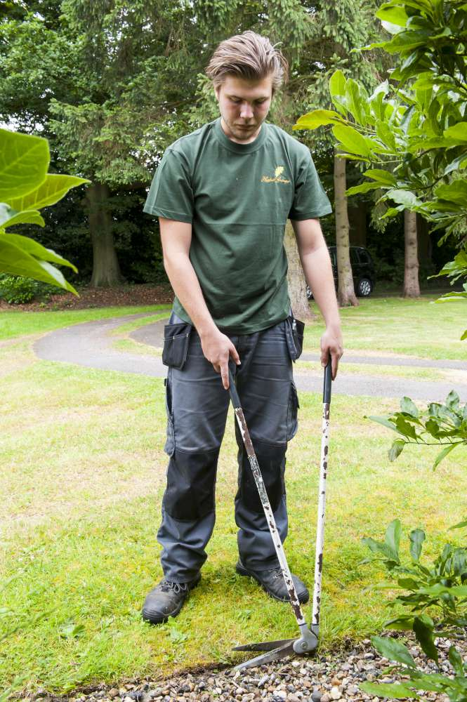 Hayfield Landscapes Gardeners in Orpington (41)