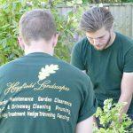 Hayfield Landscapes Gardeners in Orpington (43)