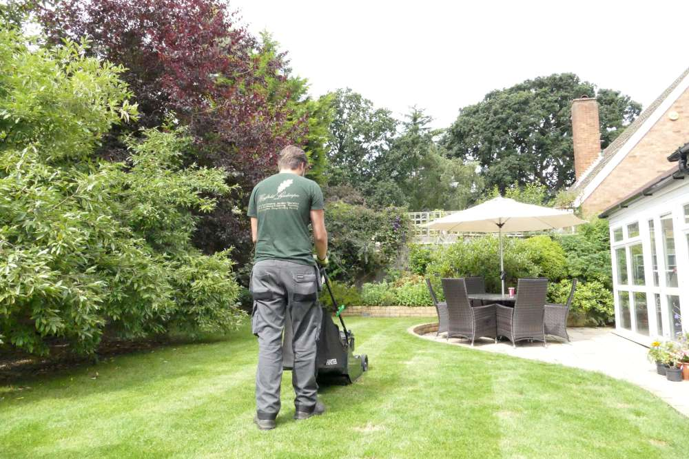Hayfield Landscapes Gardeners in Orpington (46)