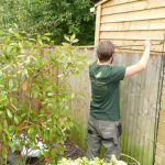 Hayfield Landscapes Gardeners in Orpington (5)