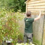 Hayfield Landscapes Gardeners in Orpington (5)