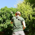 Hayfield Landscapes Gardeners in Orpington (9)