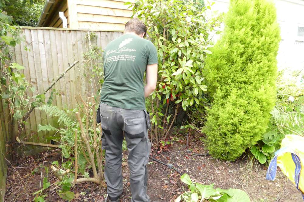 Landscape Gardeners Orpington | Hayfield Landscapes